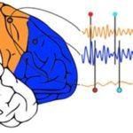 Mantener el ritmo, importante en la música y también en la actividad de las neuronas
