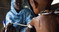 Las personas malnutridas son más propensas a morir por infecciones comunes y otras enfermedades inmunológicas, no por la falta de […]
