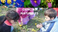 Gómez María Valeria Consultora REDEM – Argentina  Punto de partida Las Ciencias Naturales constituyen una herramienta fascinante […]