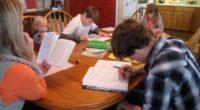 Mientras su primogénito de nueve años conjuga verbos en francés con un profesor particular, Emily Bradley guía a su hijo […]