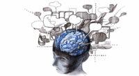 El cerebro humano es capaz de transformarse notablemente, y no solo en la infancia y en la adolescencia, sino incluso […]
